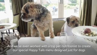 Mercure Hotels Happy Tails