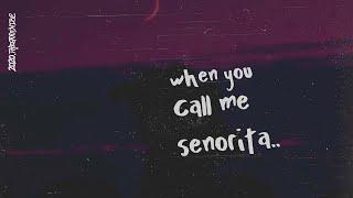 Video Shawn Mendes & Camila Cabello - Señorita (Lyrics) download in MP3, 3GP, MP4, WEBM, AVI, FLV January 2017