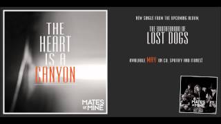 Mates of mine - The heart is a canyon (Recorded @ Zebra Studios)