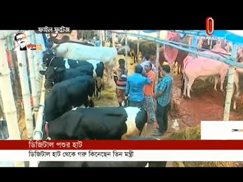 Cattle Hat has digitally started on the initiative of DNCC (11-07-2020) Courtesy:Independent TV