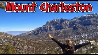 Las Vegas Hiking Bristlecone Loop Trail Lee Canyon (Winter) - YouTube