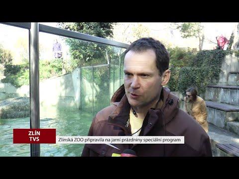 TVS: Zlínský kraj 2. 3. 2019
