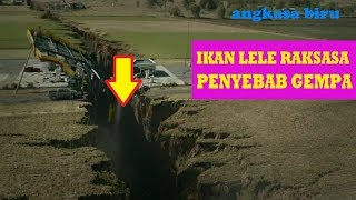 Download Video Ikan LELE RAKSASA Penyebab GEMPA BUMI MP3 3GP MP4