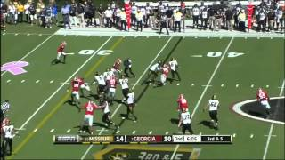 L'Damian Washington vs Georgia (2013)