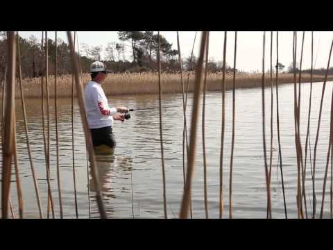 Rapala X-Rap CountDown 7 (XRCD-7) videó