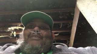 AFTER EIGHT YEARS I WILL FINALLY GET MY LIVER TRANSPLANT! by Primo Kush