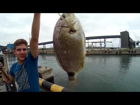 ловля рыбы на море фильм