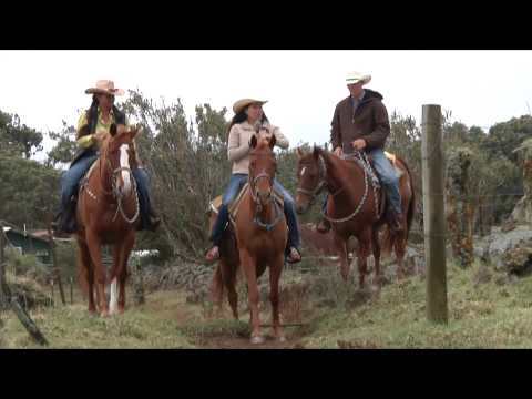 Cowboys of Hawaii with Vicki Lee
