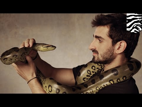 Anaconda eats man: Paul Rosolie 'Eaten Alive' by giant snake on Discovery's new show (видео)