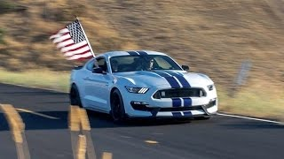 2016 Ford Shelby GT350 INSANE Exhaust Compilation! by Vehicle Virgins