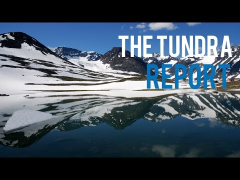 The Tundra Report