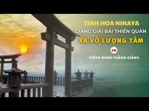 Tinh Hoa NIKAYA - Giảng Giải Bài Thiền Quán - Xả Vô Lượng Tâm 8B