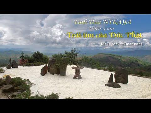 Tinh Hoa NIKAYA – Thiền Quán – Trái Tim Của Đức Phật