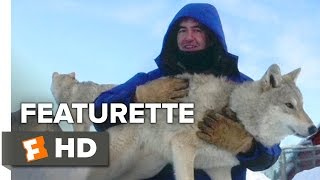 Wolf Totem Featurette   Wolf Training  2015    Shaofeng Feng