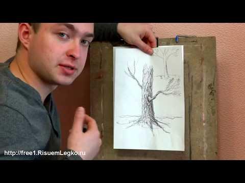0 Как рисовать Осеннее Дерево и его Кору
