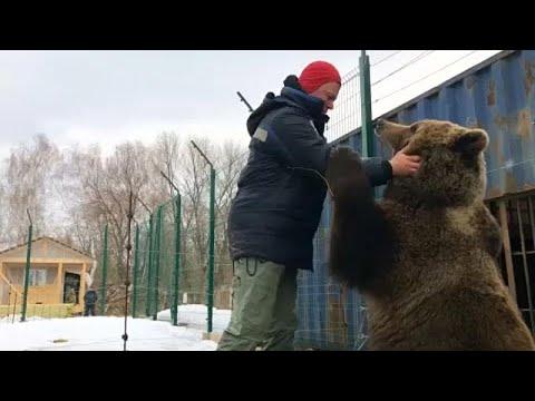 Ρωσία: Αρκούδα κατοικίδιο σε αεροπορική βάση