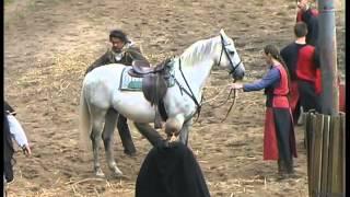 Emir - Satzvey