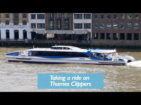 Thames River Bus