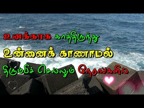Cute quotes - Tamil Love Whatsapp Status Video Love feeling sad quotes
