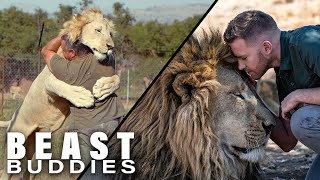 The Men Who Cuddle Lions I Beast Buddies Special by Barcroft Animals