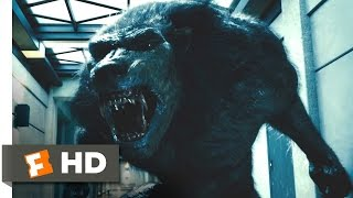 Nonton Underworld: Awakening (8/10) Movie CLIP - Elevator Drop (2012) HD Film Subtitle Indonesia Streaming Movie Download