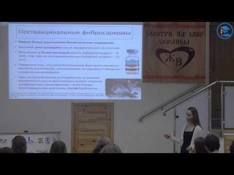 «Саркома мягких тканей. Биологическое поведение. Диагностика и тактика лечения», К. В. Лисицкая