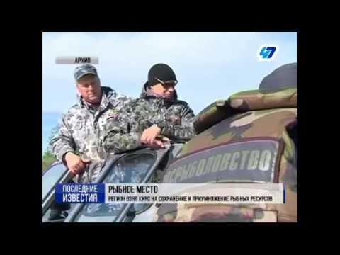 В Интерфакс Северо-Запад прошла пресс-конференция, посвященная рыбной отрасли