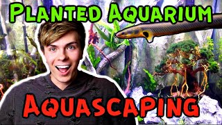 Aquascaping My Custom Aquarium! 75 Gallon Planted Tank Setup by Tyler Rugge