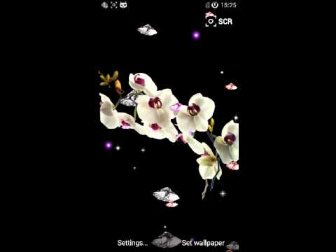 Video of Orchid Diamonds live wallpaper