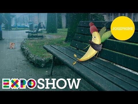 Episodio cartone animato expo con soggetto la banana Josephine episodio cartone dal titolo Josephine, Expo la banana matura, cartone animato […]