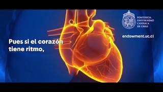 Primer modelamiento matemático de un corazón virtual en Chile