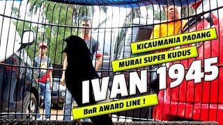 Video BnR AWARD LINE : Kicaumania Padang IVAN 1945 Nekat Bawa NEW BOCET Murai Batu Super Kudus, Hasilnya?? MP3, 3GP, MP4, WEBM, AVI, FLV Desember 2018