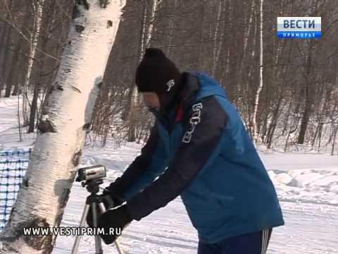 В Арсеньеве прошло первенство по лыжным гонкам среди спортсменов-любителей