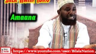 Amaana By Shek Amiin Ibro
