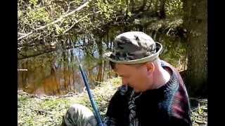 весенняя ловля плотвы в речках подмосковья.