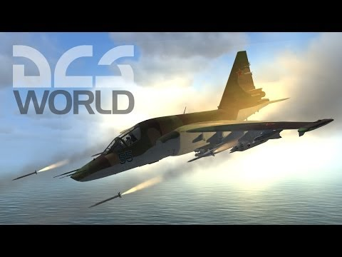 Digital Combat Simulator World...