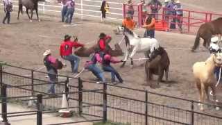 Cheyenne (WY) United States  city pictures gallery : 2015 Cheyenne Frontier Days Rodeo