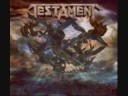 The Evil has Landed - Testament