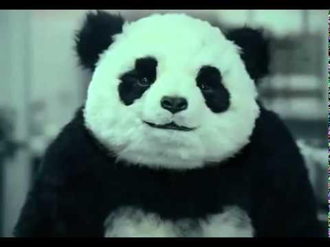 No le digas que no al panda