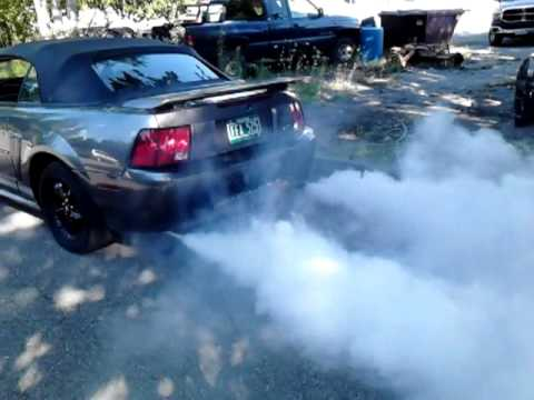 girls revving - Here she is again folks by popular demand Seafoaming and revving the Mustang... With 3 inch exhaust it was a lot of smoke... Thanks all my subscribers for wa...