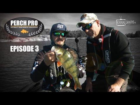 Perch Pro – Deel 3