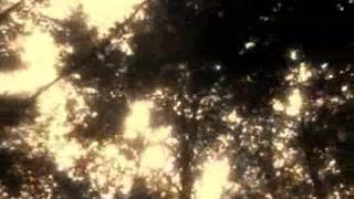 "Video SKYTEASEE - ""100"" (DEMO)"