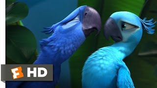 Nonton Rio  2 5  Movie Clip   Not Exactly Lovebirds  2011  Hd Film Subtitle Indonesia Streaming Movie Download