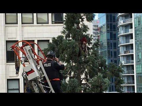 Σιάτλ: Στην δικαιοσύνη o άνδρας που έμεινε σκαρφαλωμένος σε δέντρο για 25 ώρες