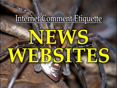 "Internet Comment Etiquette: ""News Websites"""