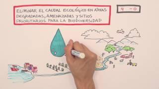 Peligro de gol a la Reforma al Código de Aguas