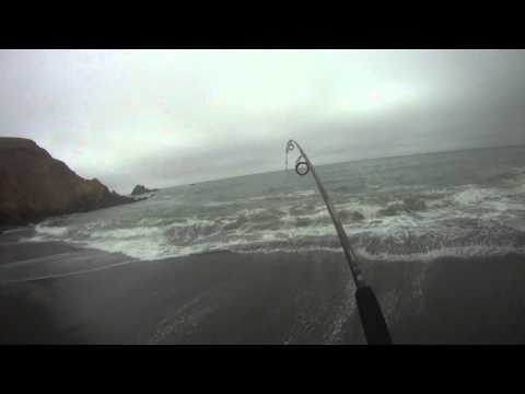 SURF FISHING for STRIPED BASS on a California Beach