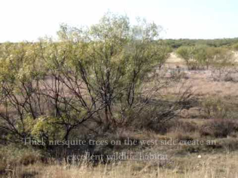 158 acres Quanah, TX