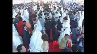 11月11日--2012新北市聯合婚禮