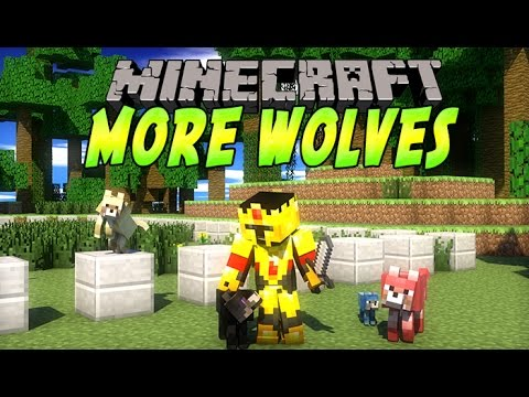 mods - Un mod rajoutant un loup par biome avec chacun leur style pour varier les plaisirs :) . lien du mod : http://www.planetminecraft.com/mod/125-more-wolves-mod---a-wolf-for-every-biome-v10/ ...